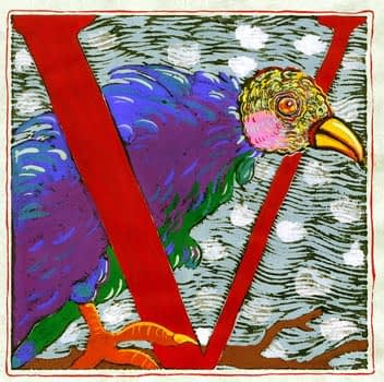 """""""V"""" is for Vulture (7 x 7)"""