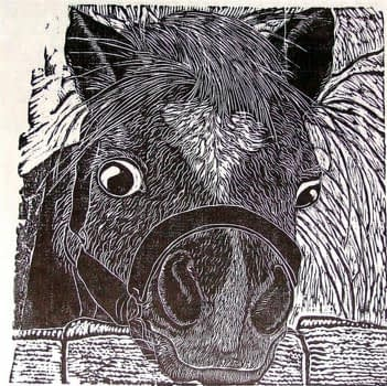 Winter Pony (9 x 9)