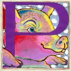 """""""P"""" is for Pig (7 x 7)"""