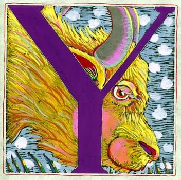 """Y"" is for Yak (7 x 7)"